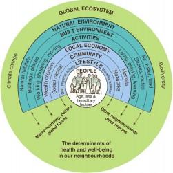 Figure 1 A Health Map