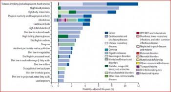 Figure 9.1 Burden of disease