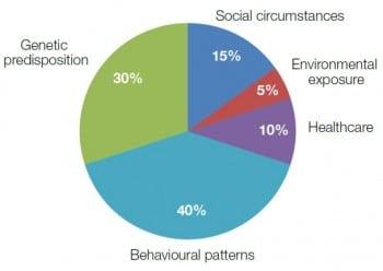 Figure 9.3 Factors contributing to premature death